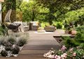 Creating a Beautiful Backyard