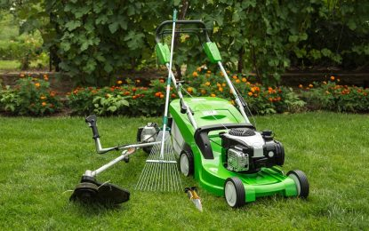 3 Ways to Save Time on Yard Maintenance
