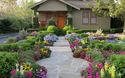 4 Ideas To Improve Your Landscaping