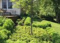 Why You Should Do Your Landscaping Chores in the Fall